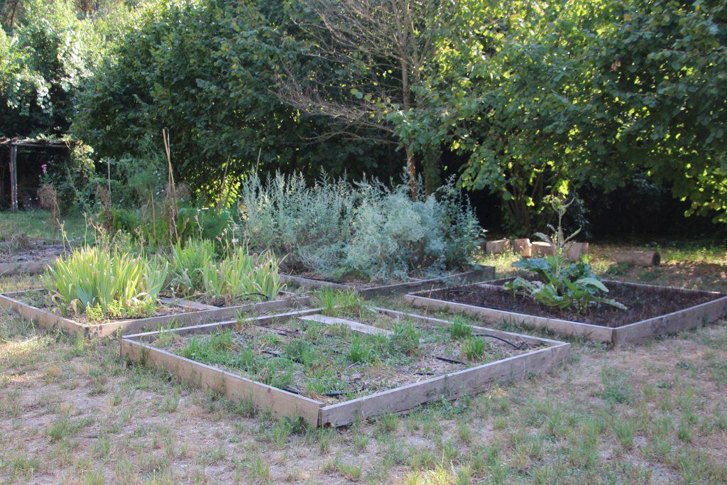 Zappata Romana – connecting urban gardening communities ...