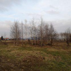 Community garden views in Maribor. Source Eutropian